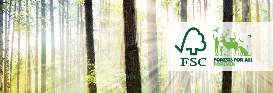 Ylea.eu, le site 100% Français, partenaire de tous les acteurs de la prévention !